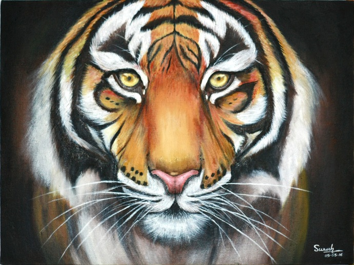 Indian Tiger by K SURESH KUMAR, Photorealism Painting, Oil on Canvas Board, Heavy Metal color