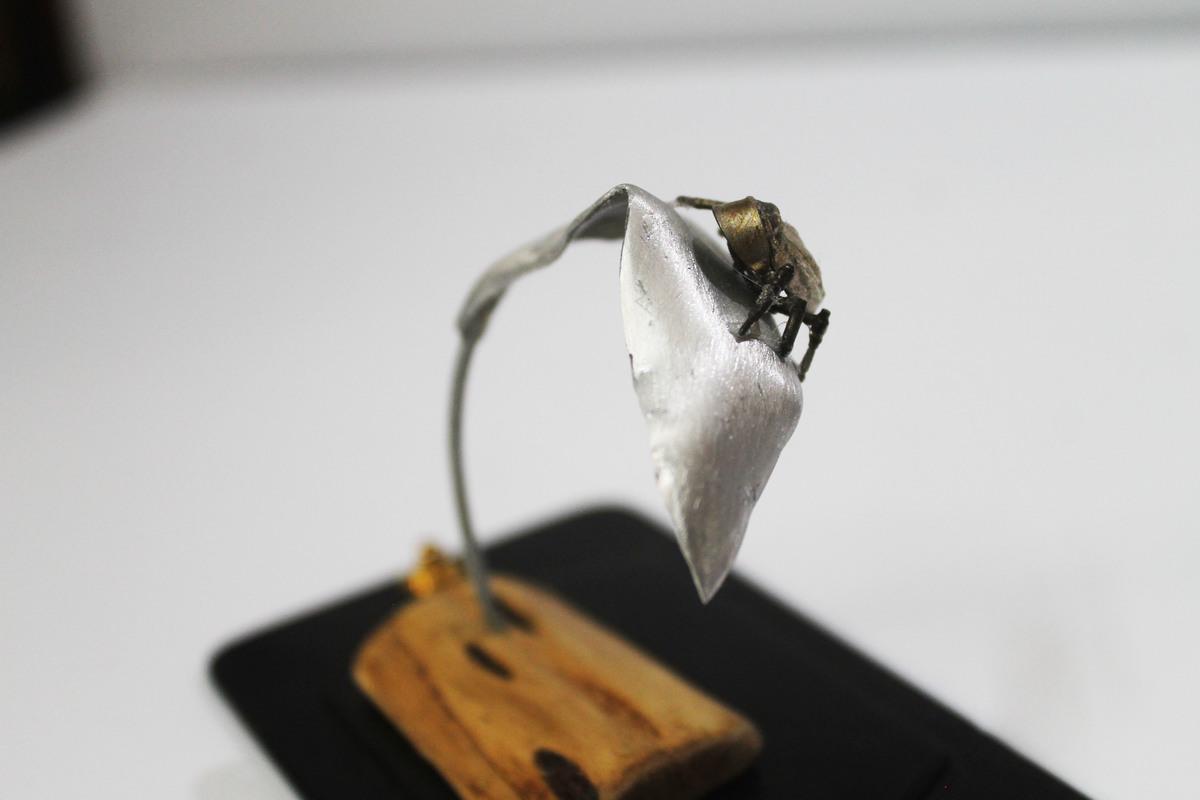 Beetle1 3