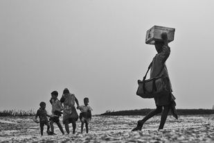 Migration by Asis Kumar Sanyal, Image Photography, Digital Print on Paper, Gray color