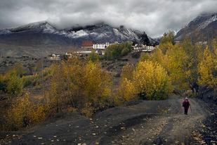 Autumn Sonata by Sugato Mukherjee, Image Photography, Digital Print on Canvas, Gray color