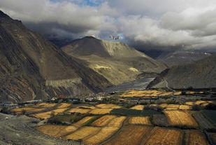 Checkered Linen Land by Sugato Mukherjee, Image Photography, Digital Print on Canvas, Gray color