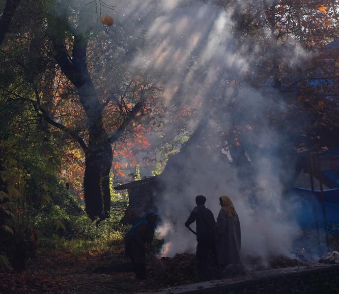 An Autumn Afternoon, Kashmir By Sugato Mukherjee