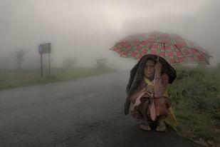 Monsoon Avenue by Sugato Mukherjee, Image Photography, Digital Print on Canvas, Gray color