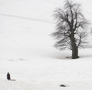 Snow by Sugato Mukherjee, Image Photography, Digital Print on Canvas, Gray color