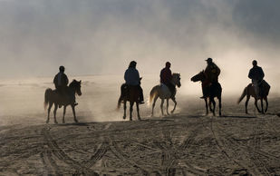 The Charge by Sugato Mukherjee, Image Photography, Digital Print on Canvas, Brown color