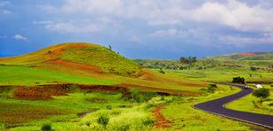 Madhya Pradesh in Rainy Season by Asis Kumar Sanyal, Photography, Digital Print on Paper, Green color