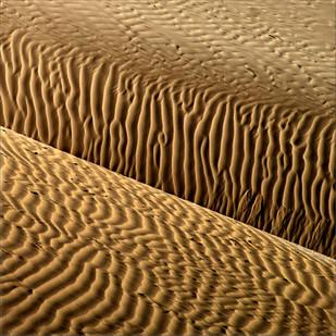 Sandscape 01 by CR Shelare, Image Photograph, Digital Print on Canvas, Brown color