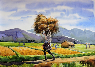 Harvest by Sunil Linus De, Impressionism Painting, Watercolor on Paper, Cyan color