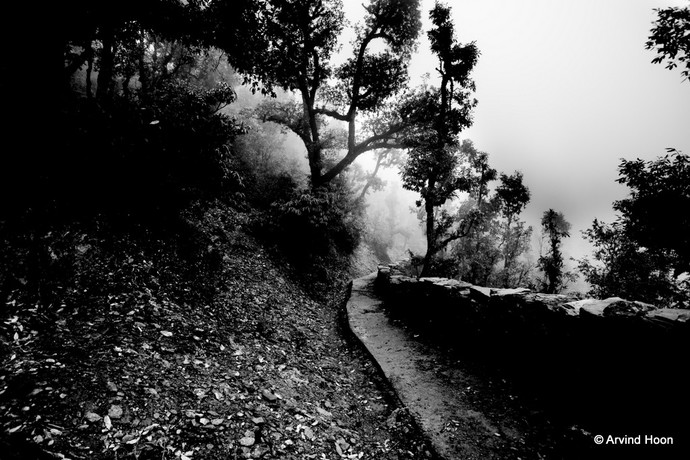 Solitude by Arvind Hoon, Image Photography, Digital Print on Paper, Gray color