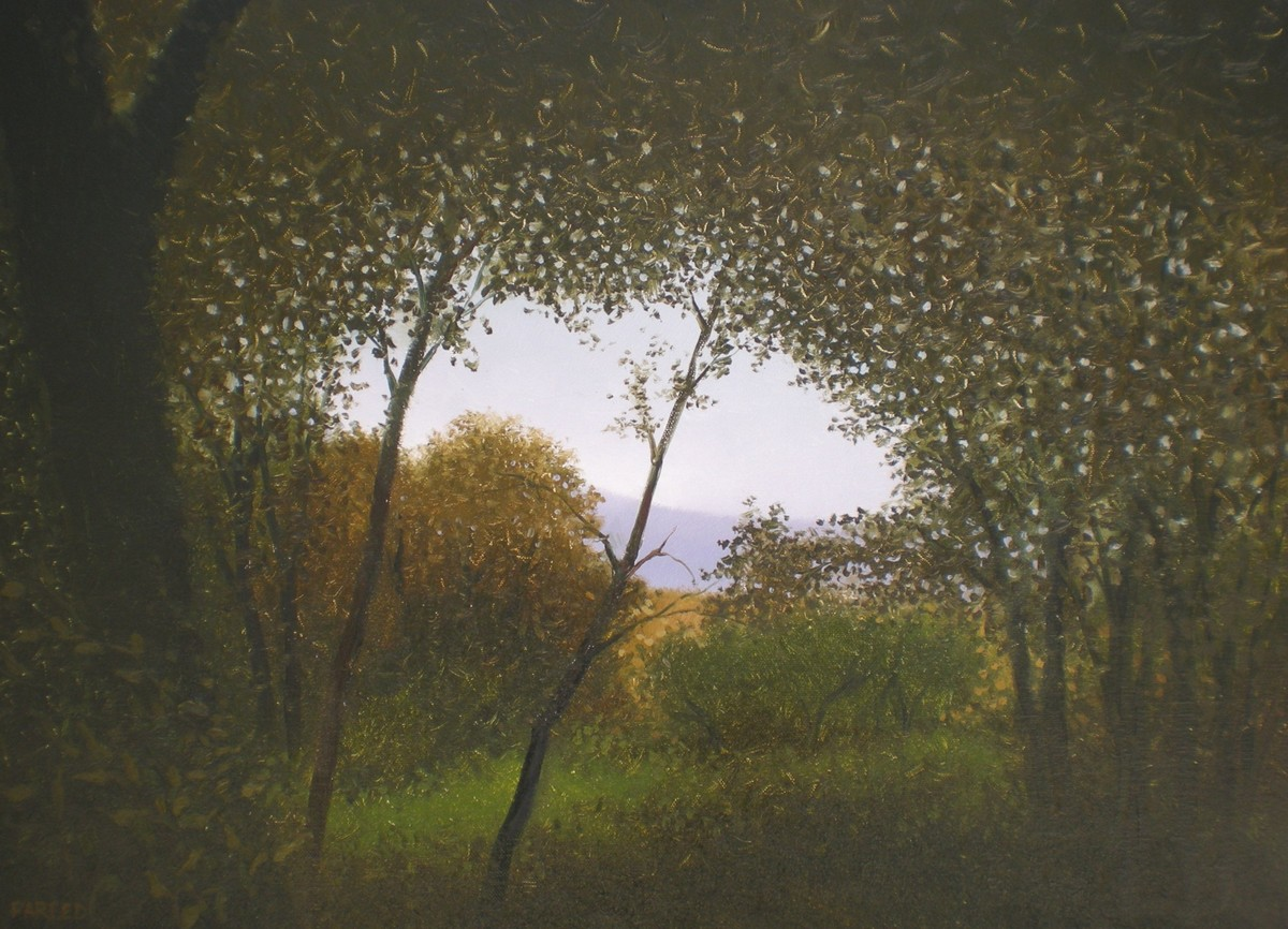 Through The Trees by Fareed Ahmed, Impressionism , Oil on Canvas, Green color
