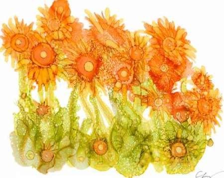 Sunlit Poppies I Digital Print by Baynes, Cheryl,Decorative