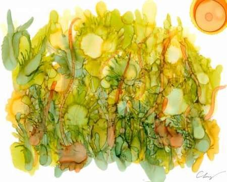 Sunlit Poppies IV Digital Print by Baynes, Cheryl,Decorative