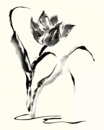 Studies in Ink - Tulip Digital Print by Rae, Nan,Illustration