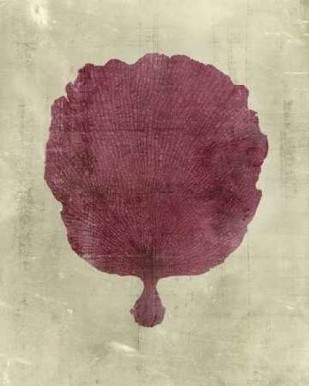 Coral in Plum Digital Print by Vision Studio,Decorative
