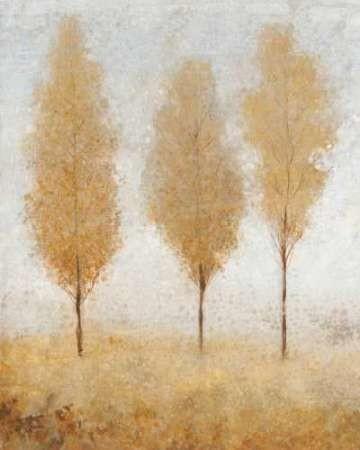 Autumn Springs I Digital Print by O'Toole, Tim,Impressionism