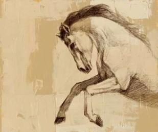 Majestic Horse II Digital Print by Harper, Ethan,Impressionism