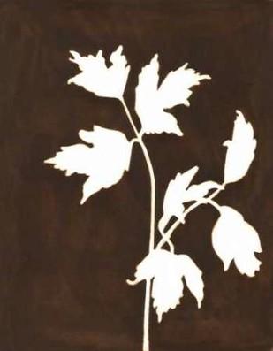 Four Seasons Foliage IV Digital Print by Meagher, Megan,Decorative