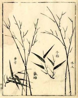 Bamboo Woodblock II Digital Print by Vision Studio,Decorative