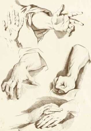 Study of Hands Digital Print by Diderot,Illustration