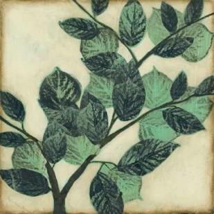 Graphic Leaves I Digital Print by Goldberger, Jennifer,Decorative