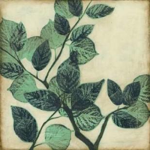 Graphic Leaves II Digital Print by Goldberger, Jennifer,Decorative
