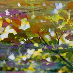 Abstract Leaf Study II Digital Print by Jasper, Sisa,Impressionism