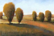 Afternoon Light I Digital Print by O'Toole, Tim,Impressionism