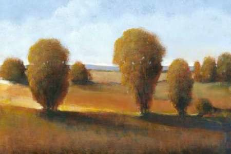 Afternoon Light II Digital Print by O'Toole, Tim,Impressionism