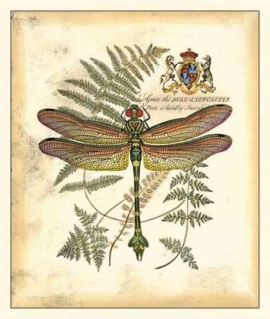 Regal Dragonfly III Digital Print by Vision Studio,Decorative