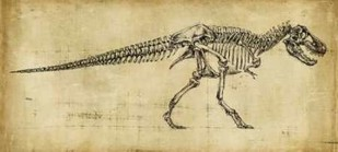 Tyrannosaurus Rex Study Digital Print by Harper, Ethan,Illustration