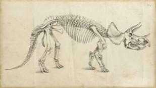 Dinosaur Study II Digital Print by Harper, Ethan,Illustration