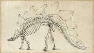 Dinosaur Study III Digital Print by Harper, Ethan,Illustration