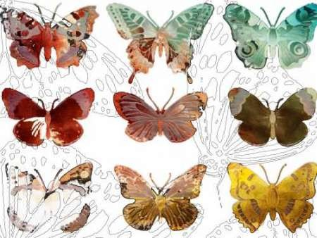 Layered Butterflies II Digital Print by Jasper, Sisa,Decorative