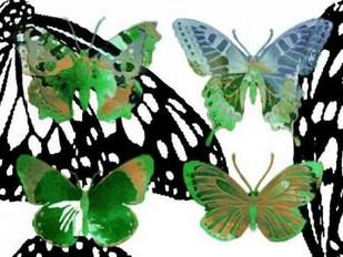 Layered Butterflies V Digital Print by Jasper, Sisa,Decorative