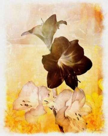 Brocade Garden II Digital Print by Burghardt, James,Impressionism