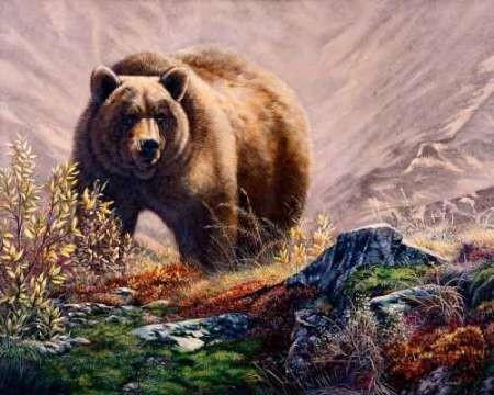 Beary Delight Digital Print by Mock, Carolyn,Impressionism