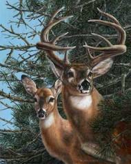 Edge of the Pines Digital Print by Mock, Carolyn,Realism