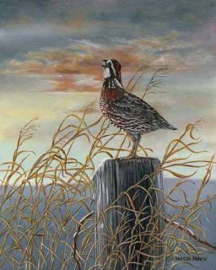 Quail on a Post Digital Print by Mock, Carolyn,Impressionism