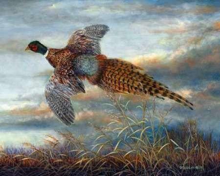Taking Flight Digital Print by Mock, Carolyn,Impressionism