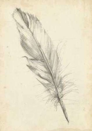 Feather Sketch III Digital Print by Harper, Ethan,Illustration