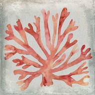 Watercolor Coral III Digital Print by Meagher, Megan,Decorative