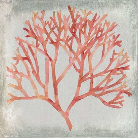 Watercolor Coral IV Digital Print by Meagher, Megan,Decorative