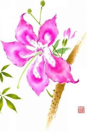 Hibiscus Flower II Digital Print by Rae, Nan,Decorative