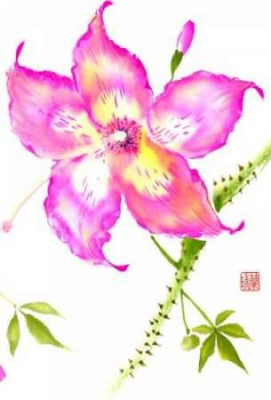 Hibiscus Flower III Digital Print by Rae, Nan,Decorative