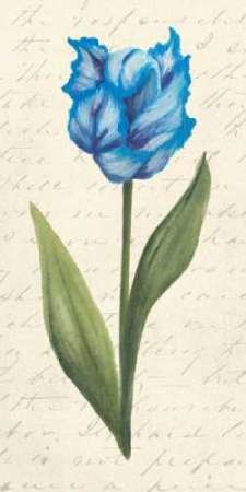Twin Tulips IV Digital Print by Popp, Grace,Decorative