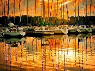 Marina Sunrise I Digital Print by Head, Danny,Impressionism