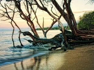 Reaching for the Sea I Digital Print by Head, Danny,Impressionism