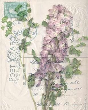 Postcard Wildflowers I Digital Print by Goldberger, Jennifer,Decorative