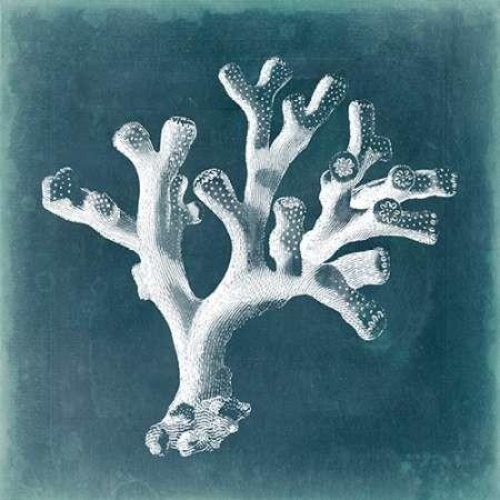 Azure Coral II Digital Print by Vision Studio,Decorative