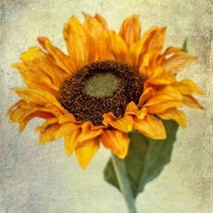 Lush Vintage Florals I Digital Print by Malek, Honey,Impressionism